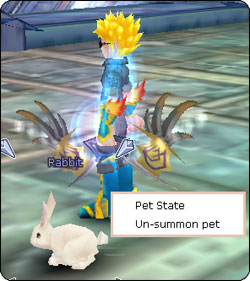 flyff how to get a pet